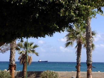 Promenade mit Palmen und Seeblick - Strandpromenade Limassol