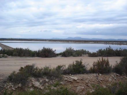 Salinen - Salinas d'Es Trenc