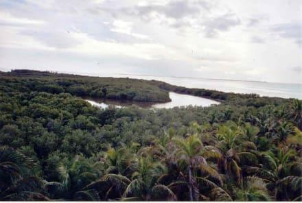 Insel Contoy - Isla Contoy