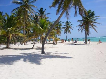 Traumstrand in der Karibik - Isla Saona