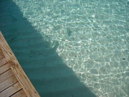 Plage - Hotel Fihalhohi Island Resort