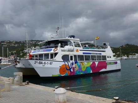 Ausflug auf dem Meer, 5 Stunden! - Submarine Vision Fahrt Paguera