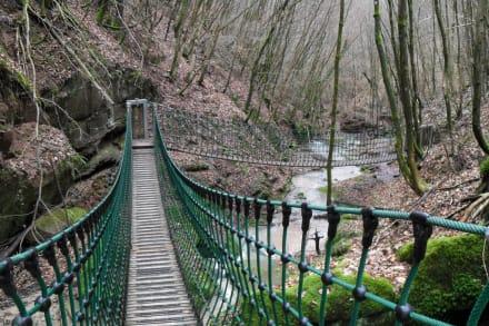 Hängebrücken im Butzbacher Tal - Eifelsteig