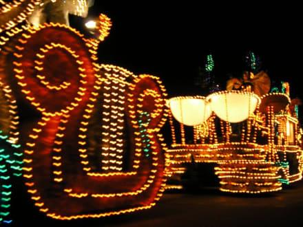 Lichterparade Magic Kingdom, Orlando - Disney World - Magic Kingdom