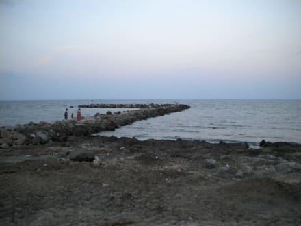 Der dreckige Strand - Strand Cala Bona
