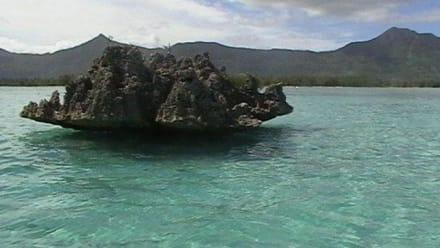Der Felsen - Coconut Island & Korallenpilz Felsen
