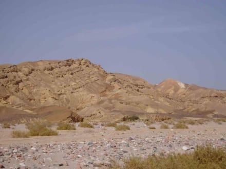 Sinai - Wadi Feiran