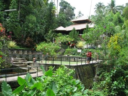 Blick über die Anlage - Hot Springs