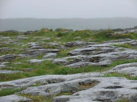 und zwischendrin - Burren