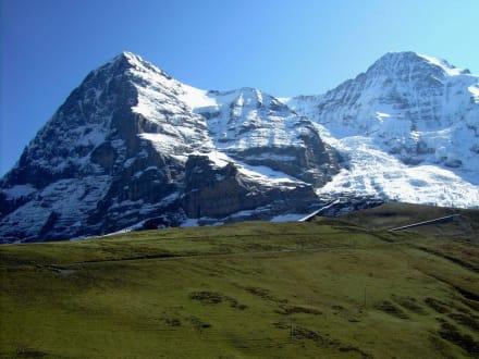 Panoramaweg Männlichen-Kleine Scheidegg (6) - Männlichen Gipfel