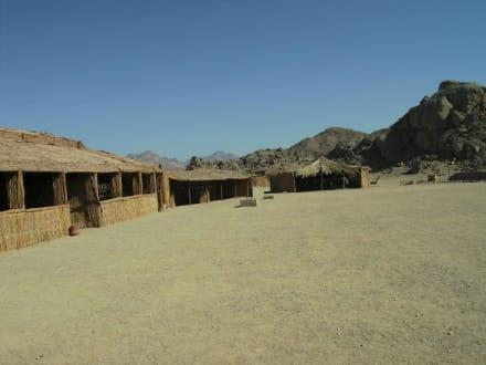 Bei den Beduinen - Wüste