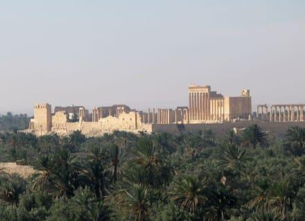 Ruinenstadt - Ruine Palmyra