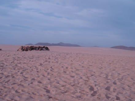 Dünenstrand Corralejo - Strände Corralejo