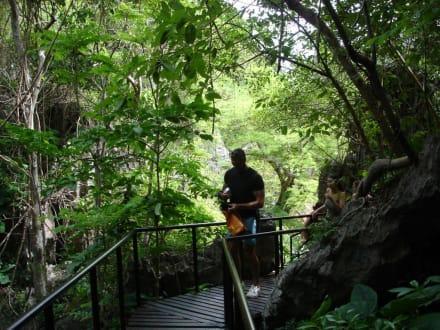 Weg zum See - Ang Thong Marine National Park