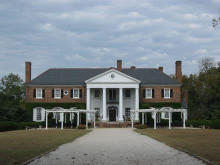 Boone Hall Plantation - Boone Hall Plantation