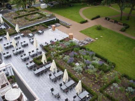 Große Terrasse und Parkanlage - Upstalsboom Hotelresidenz & SPA Kühlungsborn