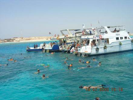 Schnorchler - Schnorcheln Hurghada
