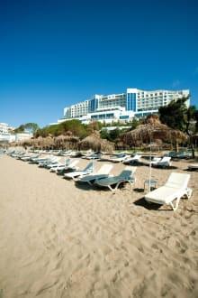 Main Beach -