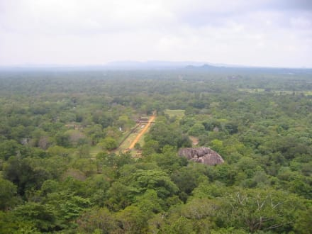 Toller Ausblick vom Sigiriya-Felsen aufs Landesinnere - Sigiriya Felsen