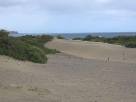 Dünen von Playa del Ingles - Dünen von Maspalomas