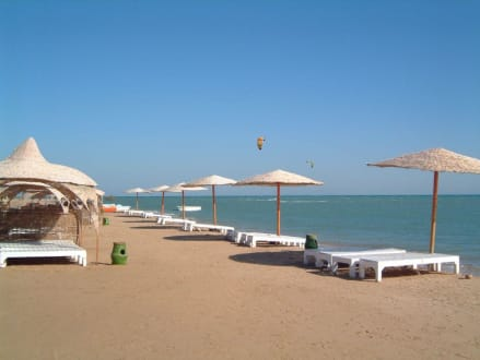 Beach - Mangrovy Beach