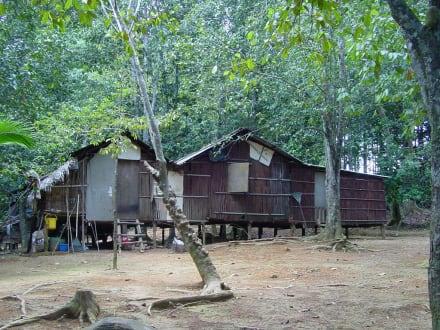 Das Dorf der Aboriginies - Lake Chini