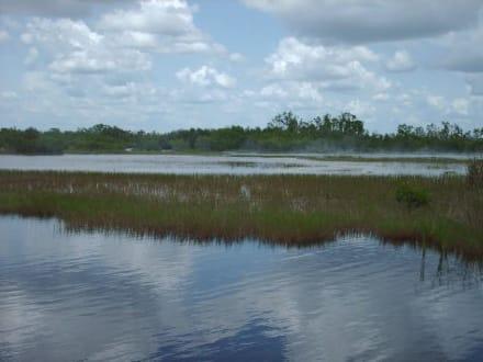 Everglades - Everglades National Park