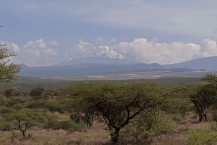 Mountain/Volcano/Hills - Kilimanjaro National Park