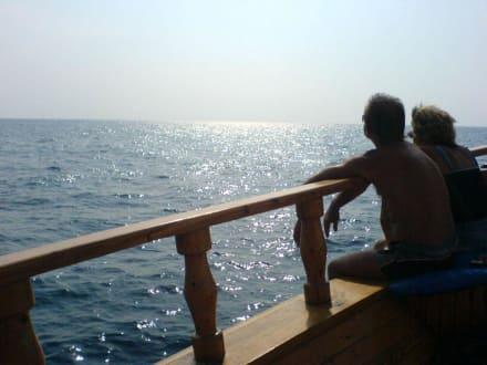 Schönes Ende des Ausflugs - Bootstour Calypso Colakli