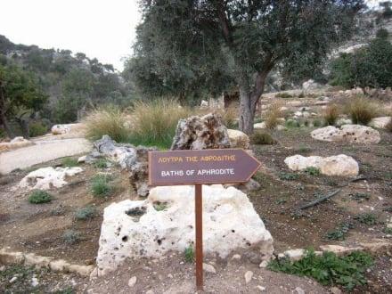 Gartenanlage - Bad der Aphrodite
