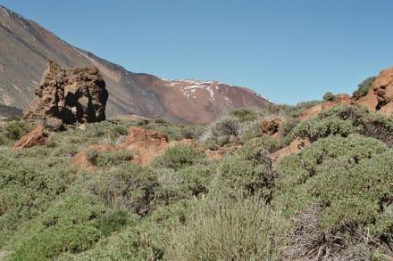 Vulkanlandschaft - Teide Nationalpark