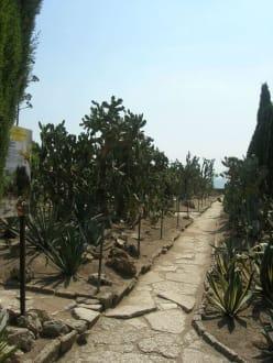 Sights (other) - Balchik Botanical Garden