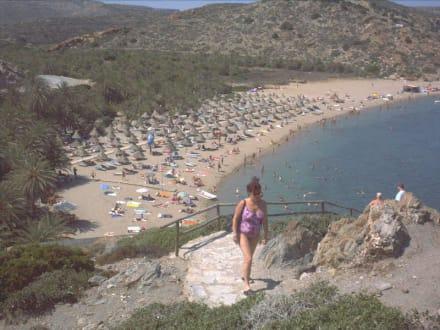 Griechenland - Kreta - Vai - Strand Vái