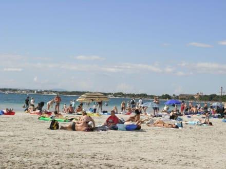 Strand von Alcudia - Strand Alcudia