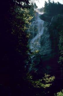 Wasserfall - Shannon Falls Provincial Park