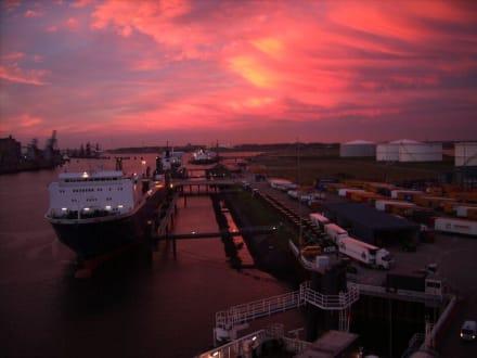 Im Hafen von Rotterdam - Hafen Rotterdam