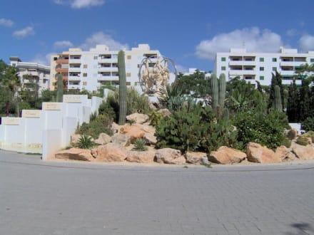 Kakteenlandschaft - Altstadt Dalt Vila Ibiza