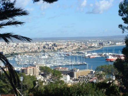 Blick nach Palma von Bellver - Hafen Palma de Mallorca
