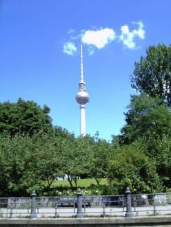 Fernsehturm am Alex - Berliner Fernsehturm