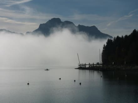 Frühmorgens am Forggensee. - Forggensee