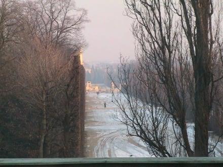 Aussicht auf Schönbrunn - Schloss Schönbrunn