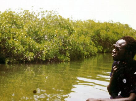 Der Bootsführer Oumar an einem Mangrovenfluss - Fluss Senegal