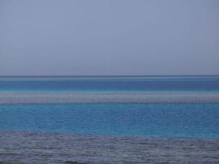 Riffe im Meer - Ausflug mit Mohamed