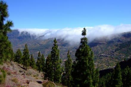 Blick vom Roque Nublo - Roque Nublo und Roque Fraile
