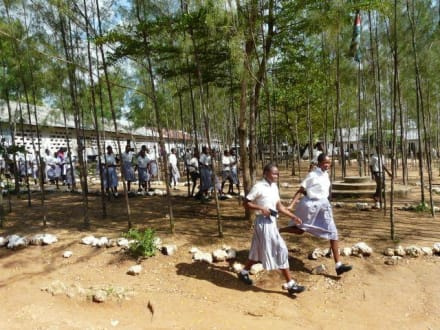 Die größeren Kinder in Schuluniform - Schule Ukunda