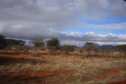 ideales Wetter - Tsavo Ost Nationalpark