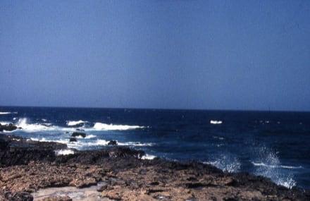Der Fütterungsplatz für die Haifische - Haifisch-Fütterung