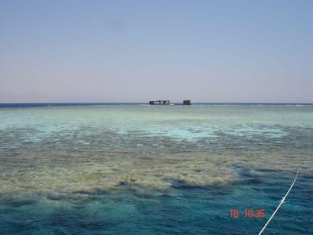 Das Jackson Reef und die Lara - Jackson Reef