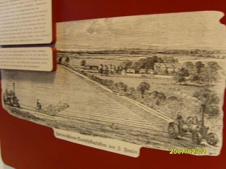 """Ein Bild zum """"Ungetüm! - Landwirtschaftsmuseum Meldorf"""