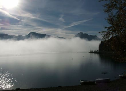 Frühmorgens am Forggensee - Forggensee